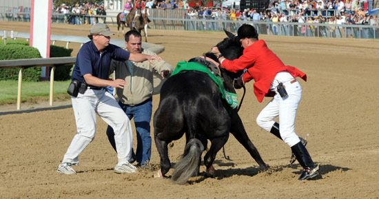 Eight Belles Breaks Down at 2008 Kentucky Derby
