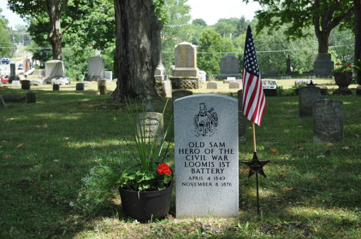 Old Sam of Coldwater, Civil War Horse Hero. Image: Genealogy Center.