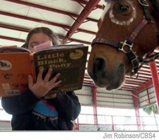 Unique program uses horses to encourage kids to read in Davie.  Here Gersheron stands before Apache holding a book and reading from a page she says out loud, 'Little Black called, please come back.'