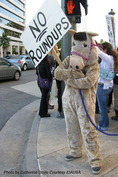 Wild horse advocate in costume at LA protest
