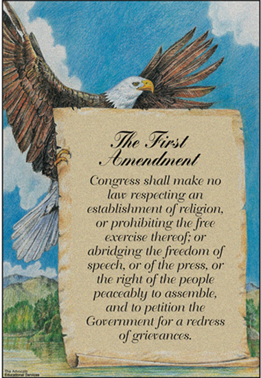 the freedom of speech as guaranteed by the united states constitution The us constitution's first amendment protects free speech very  that vague threats of violence were protected by the first amendment.
