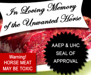 In Loving Memory of the Unwanted (Processed) Horse. Artwork Jaded Mare.
