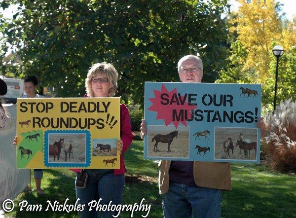 Boulder Colorado Protest October 29, 2010