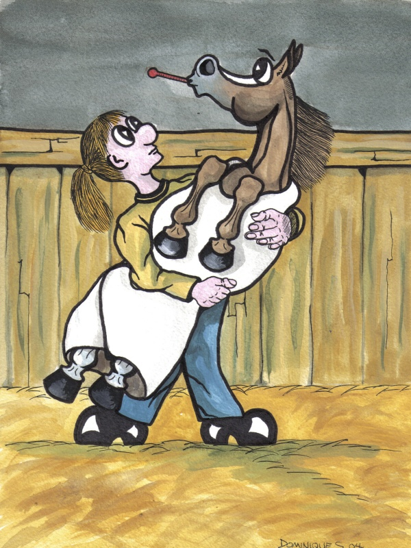 Horse Vet Cartoon Horse Vet Cartoon
