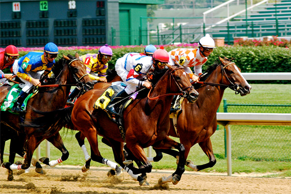 best horse racing bets