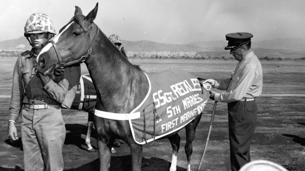 Real life war horse Sgt Reckless was made SSgt twice by the Marines.