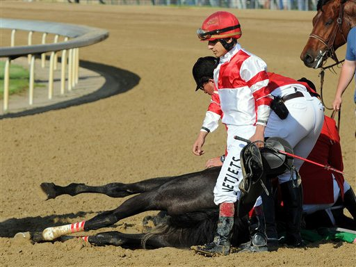 Eight Belles dies in the dirt at Churchill Downs after finishing 2nd in the 2008 Kentucky Derby.