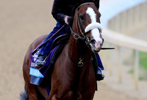 Union Rags. Matthew Stockman/Getty Images.