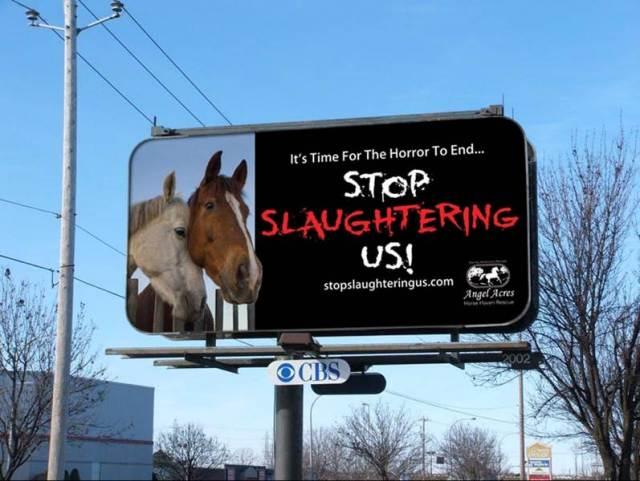 Horse Slaughter Billboard, Ottawa, Canada.