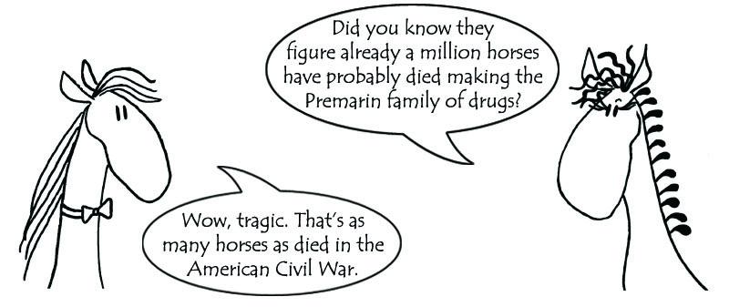 Premarin Civil War Deaths Flyer Artwork