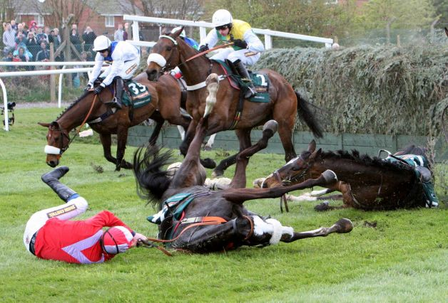 According to Pete falls and later dies from injuries sustained in the 2012 Grand National.