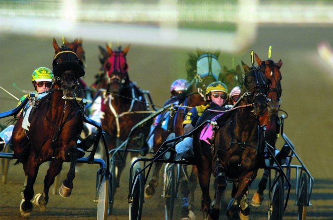 Harness Racing Canada