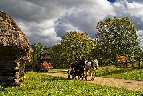 Horses pulling a carriage in Progovo, Kiev, Ukraine. Google image.