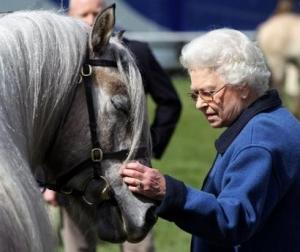 Queen Elizabeth II strokes one of her horses. AFP / File Photo.
