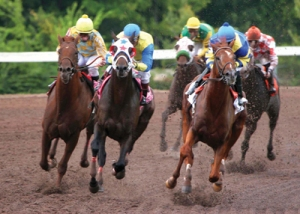 Horses racing at Louisiana Downs.  Google image.