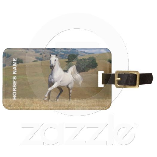 Horse Fund Horse ID Tag. Zazzle image.