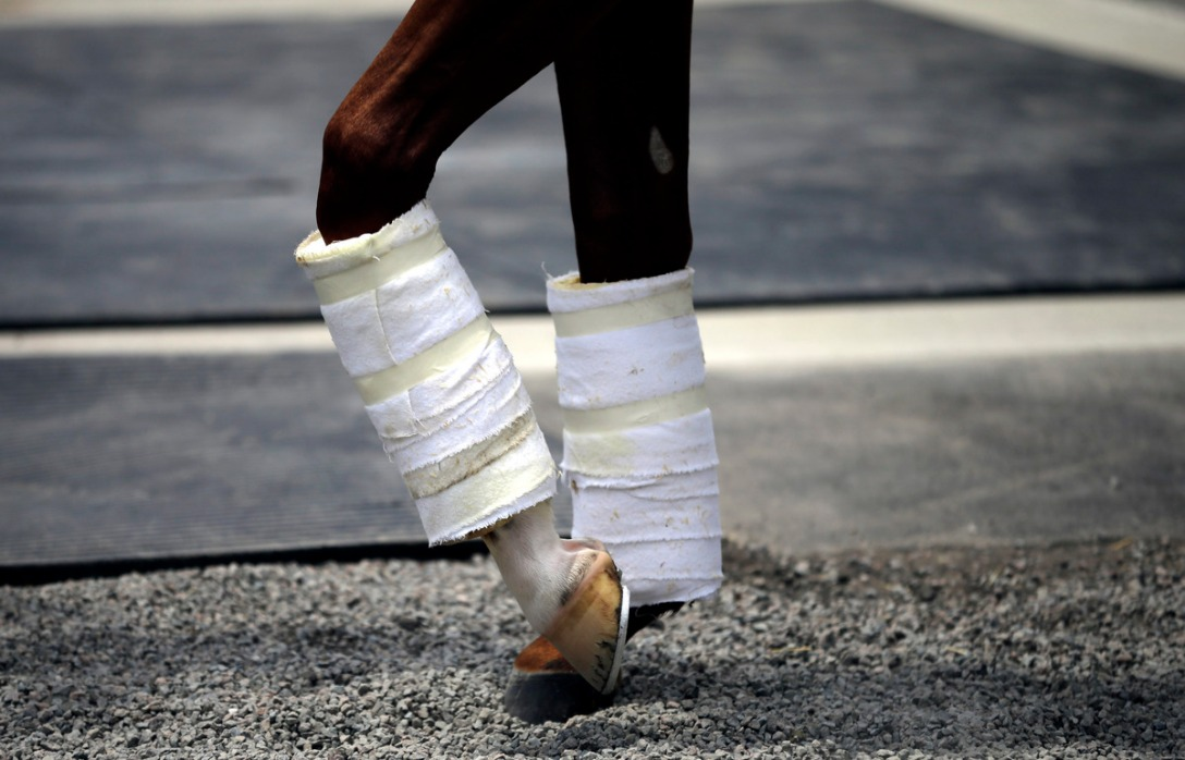 I'll Have Another retired due to swollen left front tendon. (AP Photo/Matt Slocum)