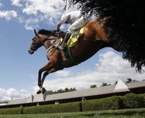 Horse jumps during steeplechase at Saratoga.  Image by Skip Dickstein / Times Union.