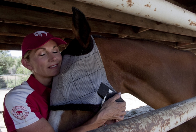Susan Peirce and Baldwin a rescue horse.  (Jennifer Cappuccio Maher/Staff Photographer)