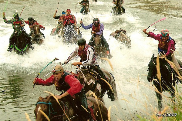 Horses whipped across deep waters in the Omak Suicide Race.