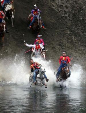 Omak Suicide Race horses plunge into river. Image / Fark.