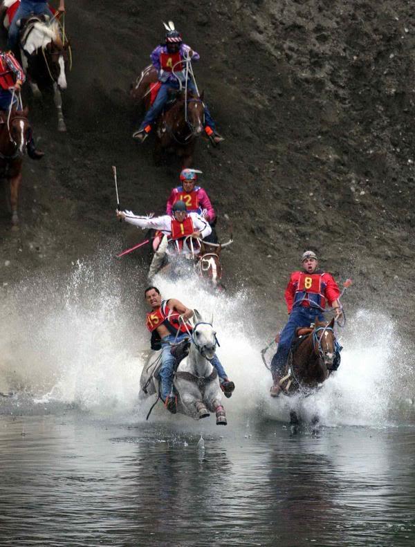 Omak Suicide Race horses plunge into rivier. Image / Fark.