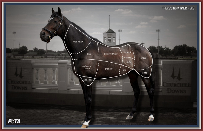 PeTA Horse Meat Ad. Christopher Nelson Ad Agency image.
