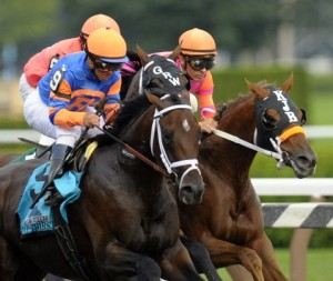 Stay Thirsty / Travers Stakes Winner 2011.  Photo: Hans Pennink/AP.