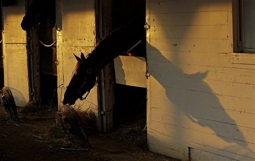 Early morning, backside Churchill Downs. Image Charlie Riedel / AP