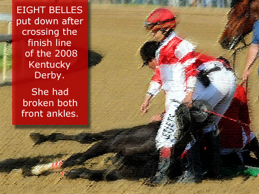 Eight Belles is euthanized on the track at the 2008 Ky Derby