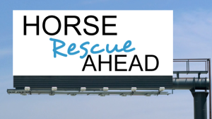 Horse Rescue Ahead sign. Tuesday's Horse graphic.