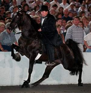 Jackie McConnell winning on Santana in the 90's. Tennesseean File Photo.