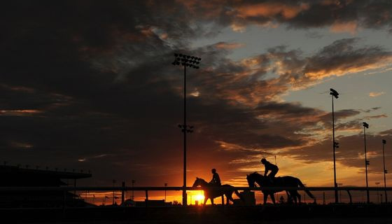 Racehorses train at dawn in Canada. Google image.