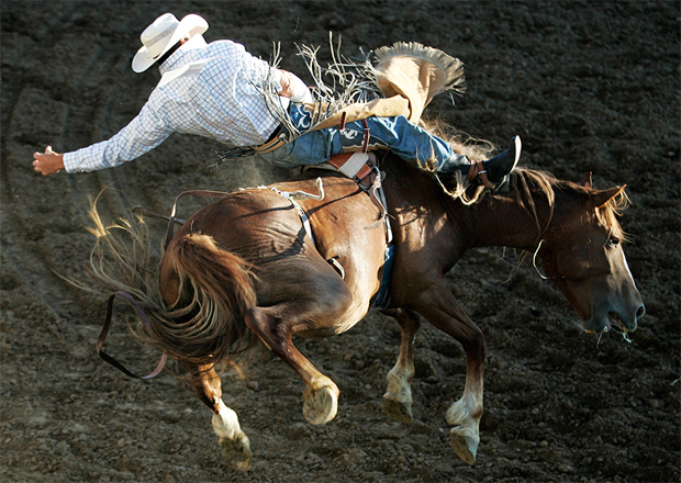 Bucking Bronco, Reno Rodeo by (c) John_Schreiber / RGJ