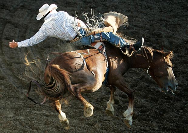 Bucking Bronco, Reno Rodeo by (c) John_Schreiber / RGJ