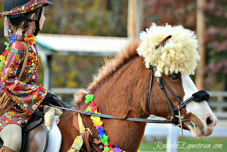 This is a fun look costume and the horse does not seem to mind the headpiece. Know your horse and dress him up accordingly.