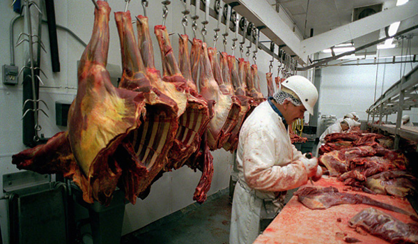 Horse Meat on the Hook. Photo Credit: Don Ryan / AP.