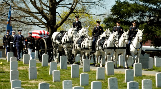 Caisson Horses Arlington National Cemetery