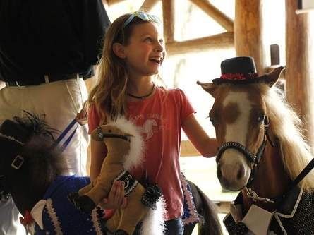 Gentle Carousel Miniature Therapy Horses. Photo by Brad McClenny/Gainesville Sun.