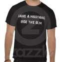 Save a Mustang, Ride the BLM by Vivian.