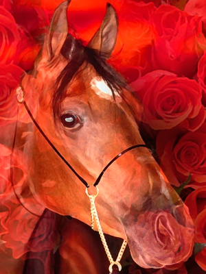 Horse and Roses Artwork. (c) Int'l Fund for Horses.