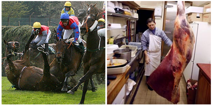 Fallen Grand National horses may be slaughtered in the UK.