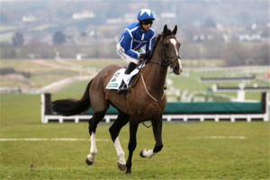 Dead. Little Josh.  Little Josh died at Aintree after falling and breaking a shoulder. He was euthanized on the course.  He is the second horse to die at the Grand National meeting. Google image.