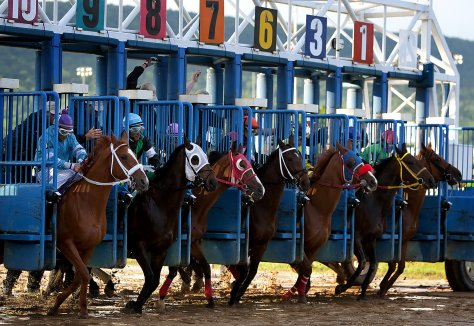 The horses leave the gate for a Friday night race at Penn National Race Course.  Image by SEAN SIMMERS, The Patriot-News.