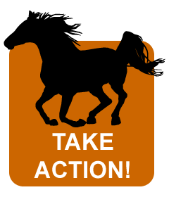 Take Action Graphic
