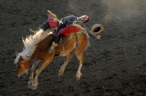 Bareback Event, Reno Rodeo. Source: Flickr.