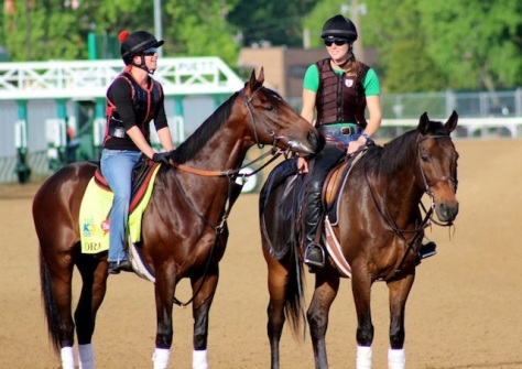 Well Well (right) is an ex-racehorse featured on Off-Track Thoroughbreds. Photograph from their blog, taken by Brittan Wall.