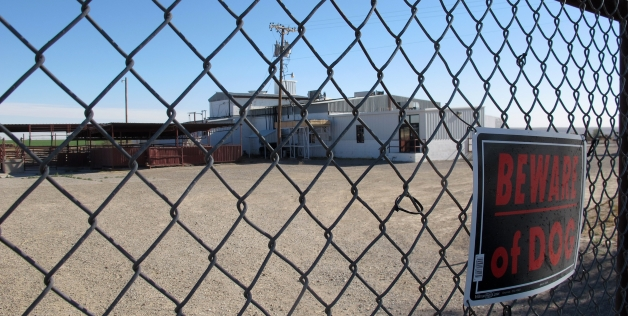 Exterior view of the Valley Meat Co slaughter plant in Roswell, NM, through the fence.  Where was the dog when it got torched? (MSN.com photo).