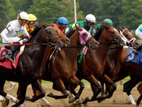 Horses racing at Saratoga in 2010. (AP Photo/Mike Groll)