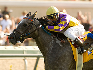 Monzante winning the 2008 Eddie Read. Photo: Benoit/Blood-Horse.